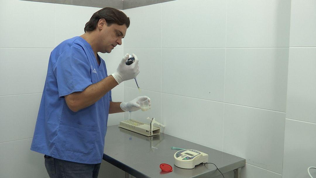 Laboratorio - Pruebas para Caballos